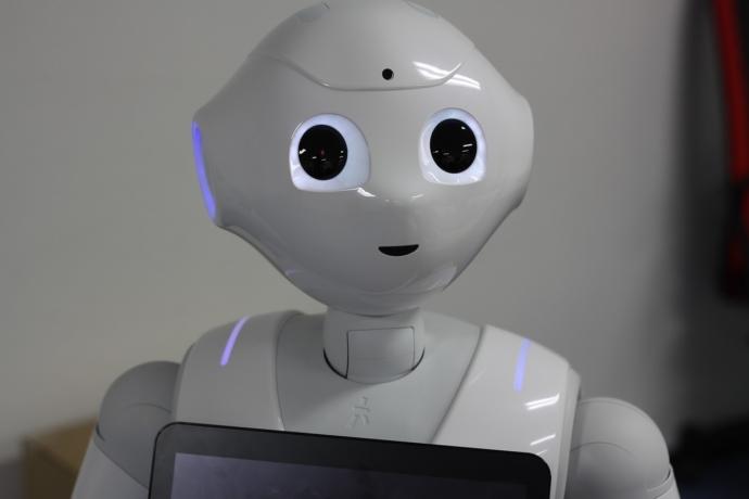 SoftGroup Robot